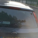ford fiesta rear screen after replacement