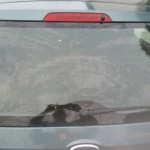 ford fiesta rear screen replacement after