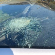 Have a Damaged Windscreen? Prioritize Replacement Immediately
