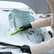 Fast Facts You Should Know About Your Windscreen